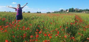 sara poppy field