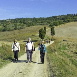 one day tour - Pienza