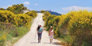 walk about italy guided tours