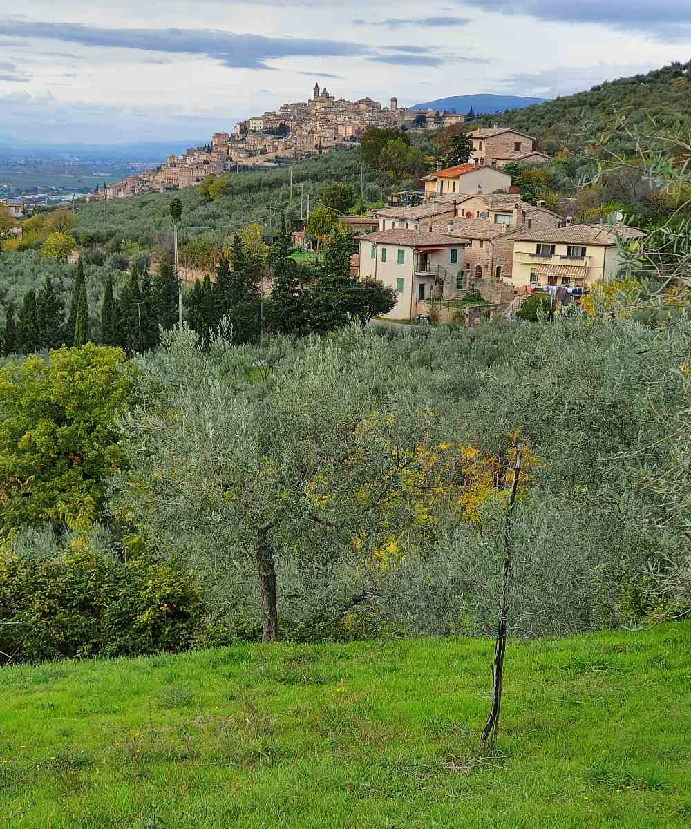 Umbria - Assisi & Le Marche Marvels