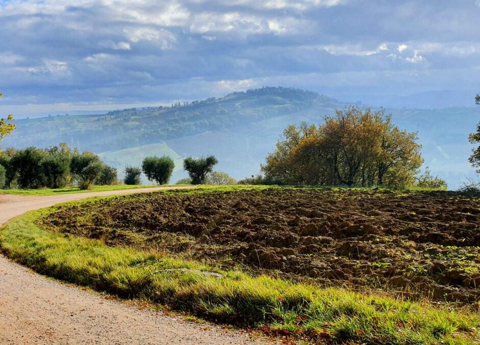 Marche region – A region as wonderful as it is unusual