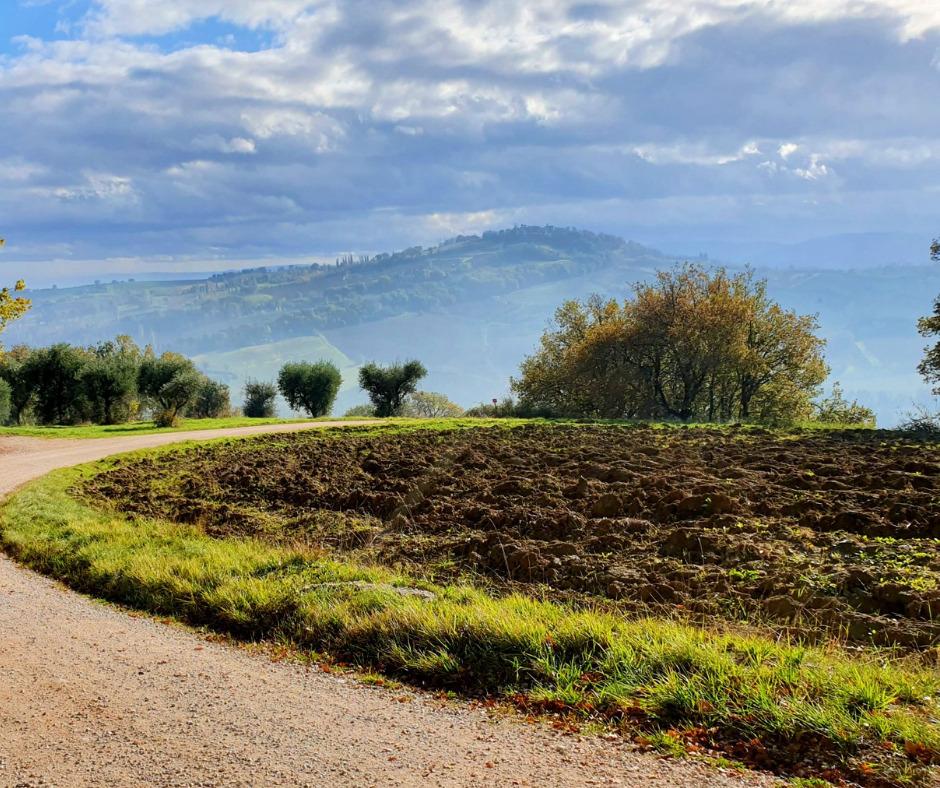 Umbria, Assisi & Le Marche Marvels